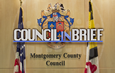 Council In Brief
