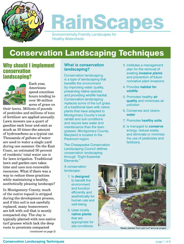 Image of the front of the RainScapes Conservation Landscaping Guide