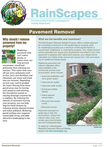Image of the front of the RainScapes Pavement Removal Guide