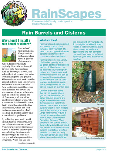 Rain Barrels and Cisterns Flyer