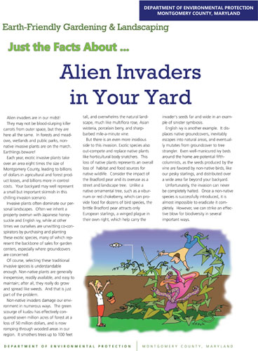 Alien Invaders in your Yard