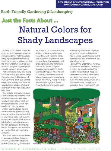 Natural Colors for Shady Gardens