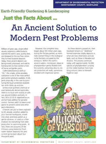 Ancient Solution to Modern Pest Problems