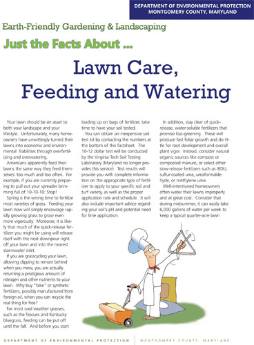 Lawn Care, Feeding and Watering