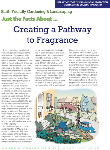 Creating a Pathway to Fragrance