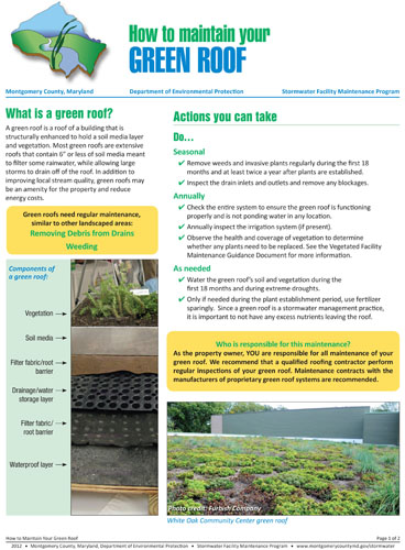 Image of the front of the green roof maintenance fact sheet.