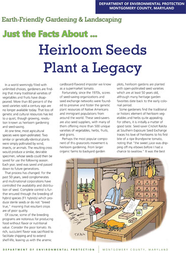 Heirloom Seeds Plant a Legacy