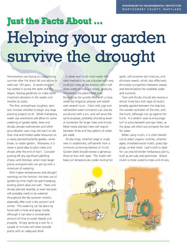 Helping Your Garden Survive Drought