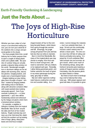 The Joys of High-Rise Horticulture