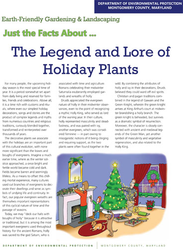 The Legend and Lore of Holiday Plants