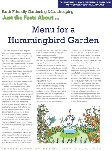Menu for a Hummingbird Garden