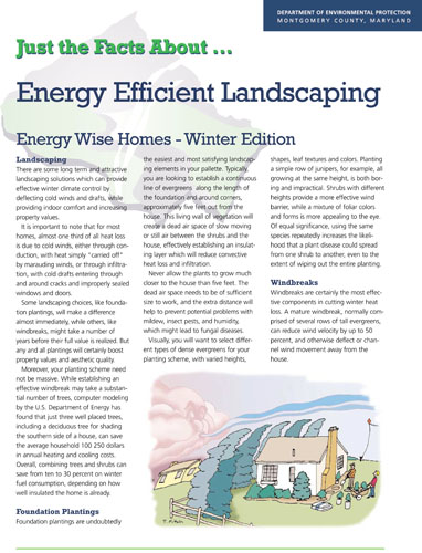 Energy Efficient Winter Landscaping