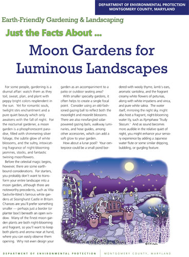 Moon Gardens for Luminous Landscapes