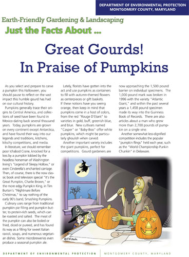 In Praise of Pumpkins