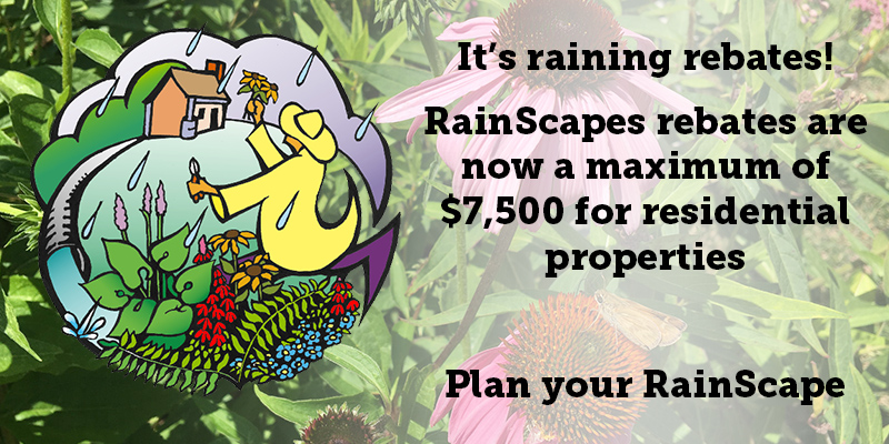 It's raining Rebates! RainScapes have increased their rebate amounts