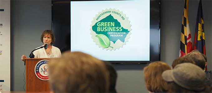 Lisa talking at a Green Business event