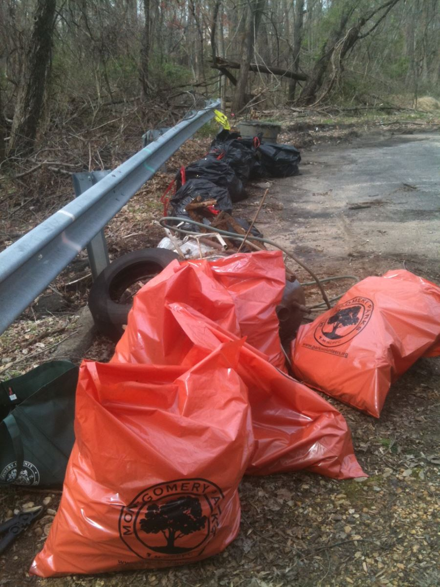 Numerous bags of trash and recyclables picked up from the Breewood Tributary