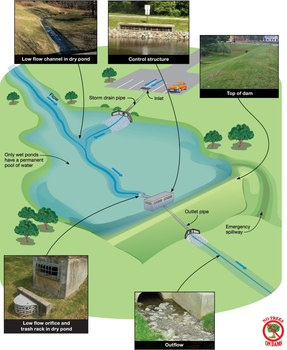Stormwater facility major projects department of for Stormwater pond design
