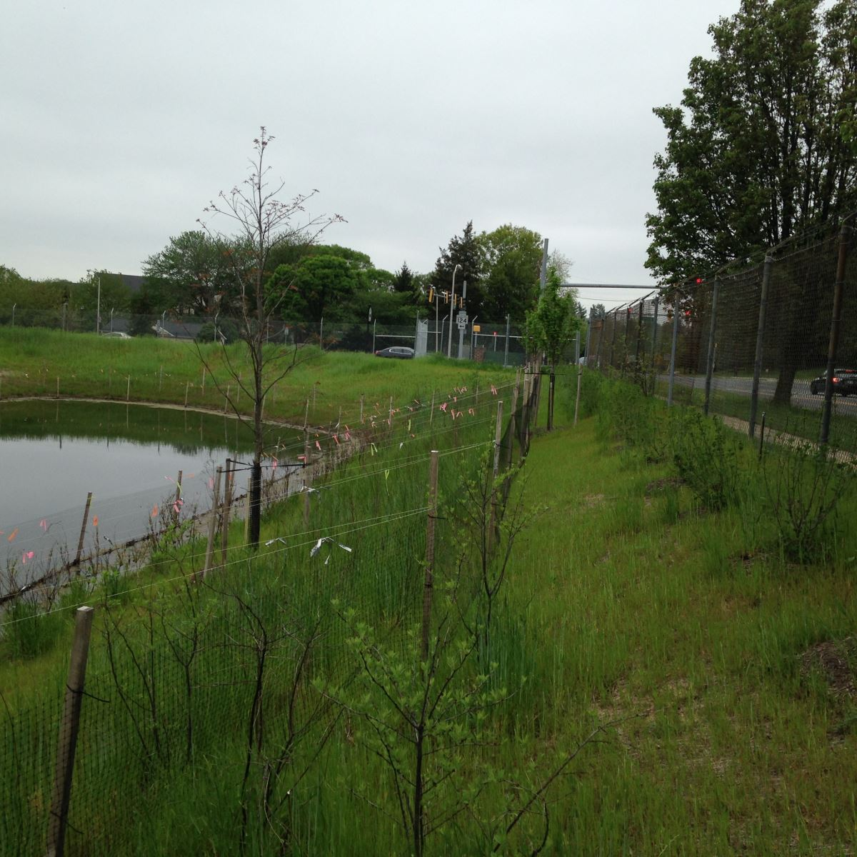 Whetstone run phase 1 stormwater ponds department of for Stormwater pond design