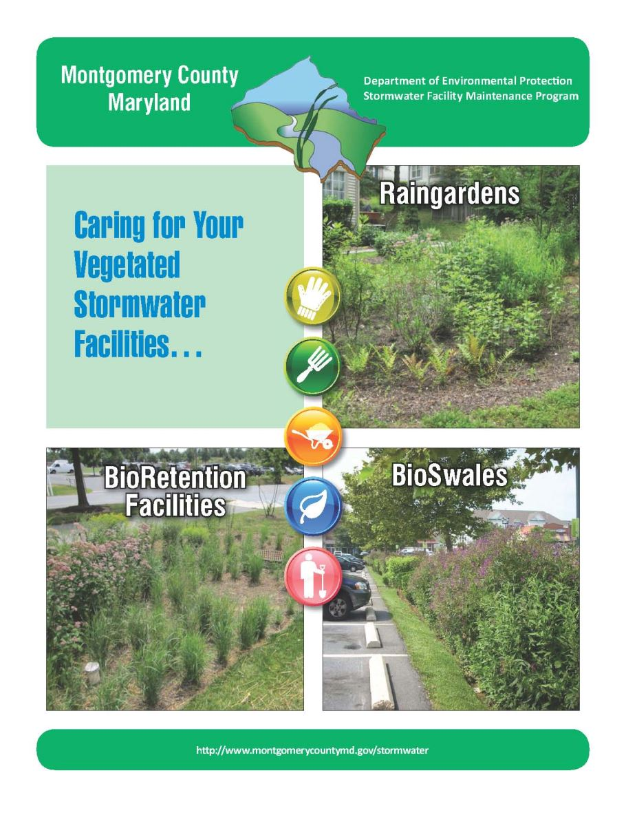 Image of the front cover of the vegetated stormwater facility guide.