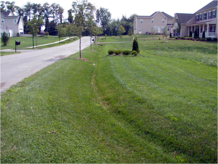 Image of a residential grass swale.