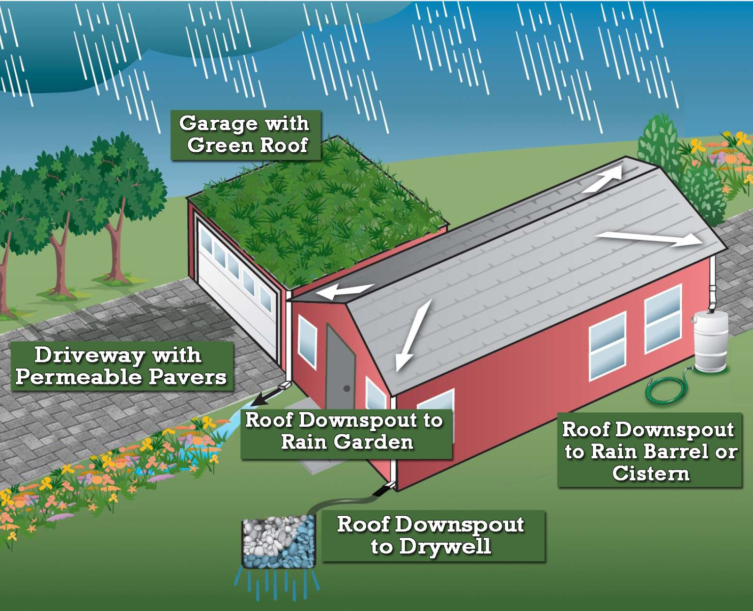 Graphic of a house with several types of stormwater management practices, including a green roof and rain garden.