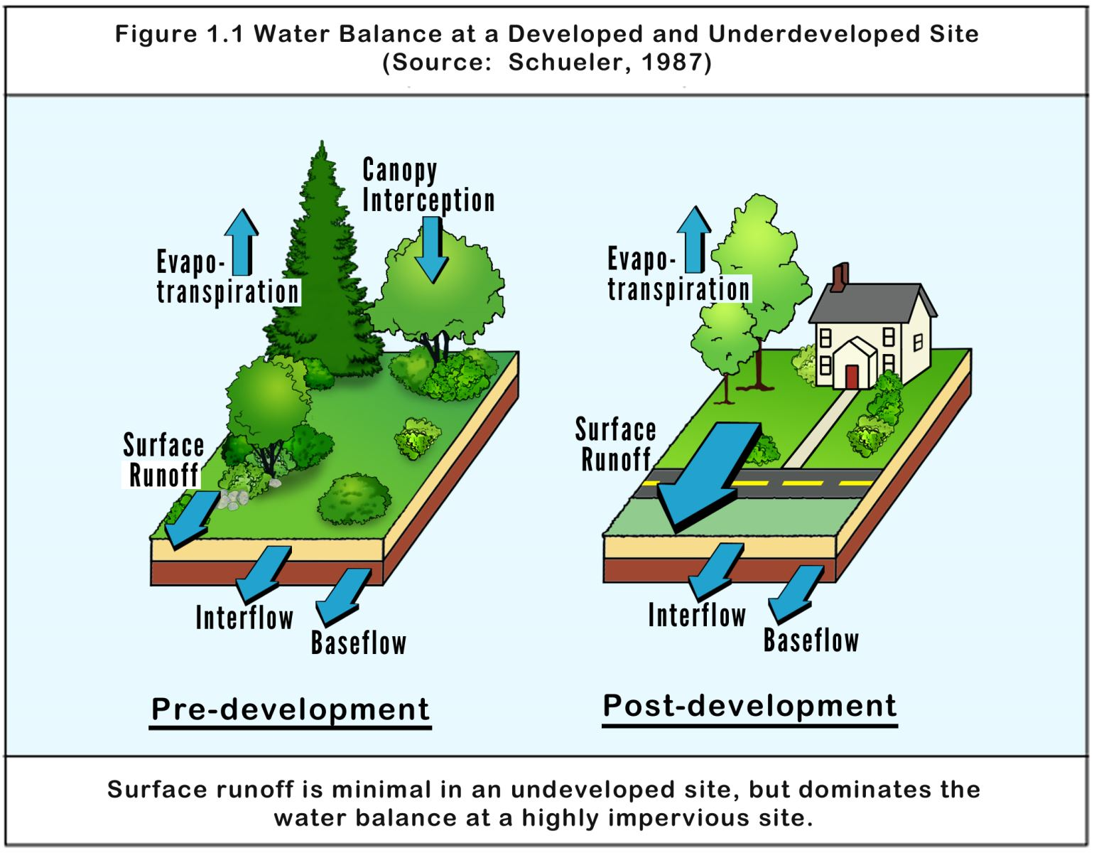 Graphic from the Environmental Site Design Manual about the impact of development on stormwater.
