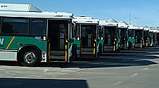 Row of buses