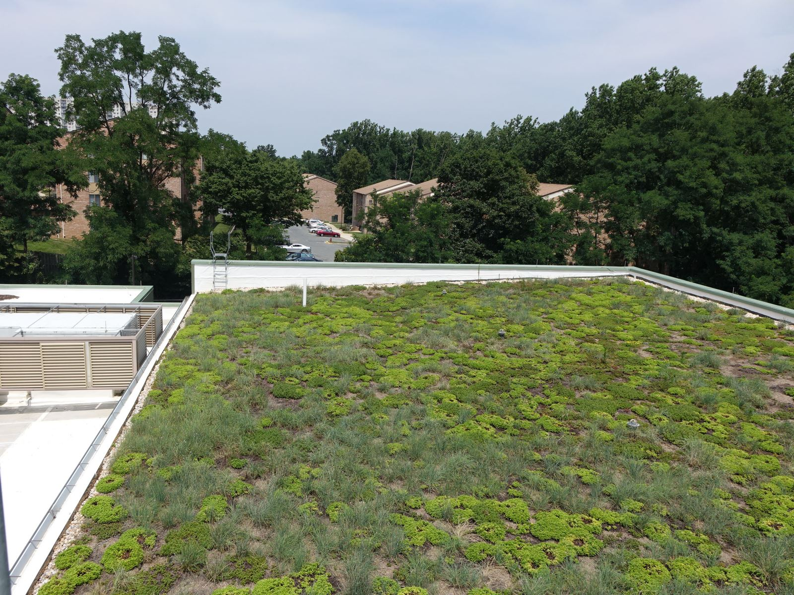 Green roof at White Oake Community Recreation Center