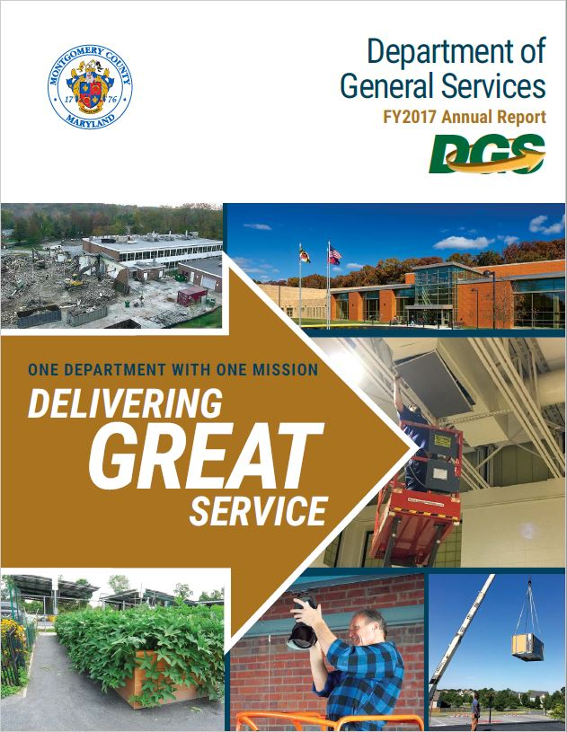 DGS 2017 Annual Report cover page