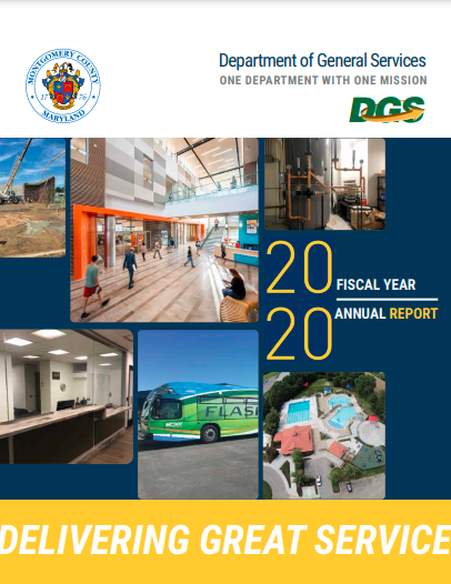 DGS 2020 Annual Report cover page