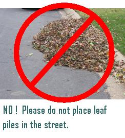 No! Please do not place leaf piles in the street. (Photo of leaf pile in the street)