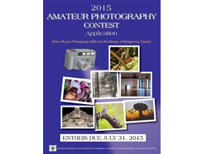 Photo contests