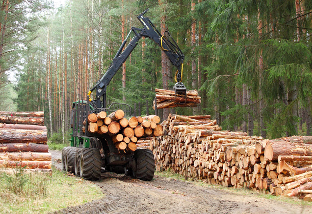 forest logging truck picking up logs