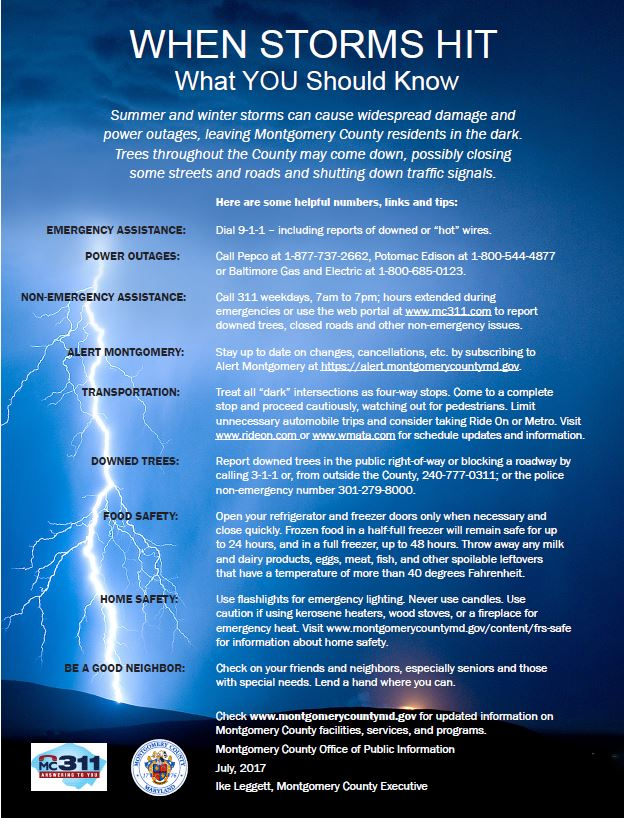 Thumbnail image of Thunderstorm tips flyer