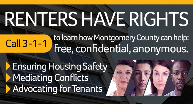 Photo: Renters Have Rights Campaign