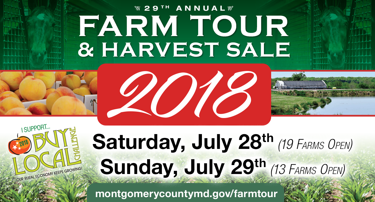 Farm Tour and Harvest Sale