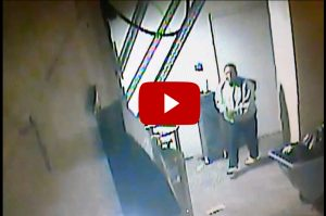 Surveillance Video of GAMMA Martial Arts Academy Burglary Suspect