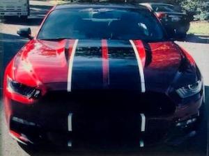 Loeb's vehicle