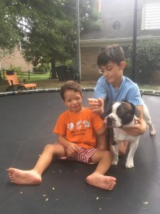 Macks the dog with his family