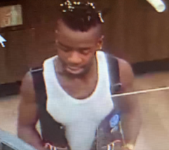 Residential burglary and credit card fraud suspect