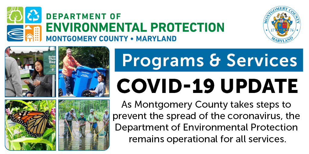 DEP Programs and Services Updates COVID-19