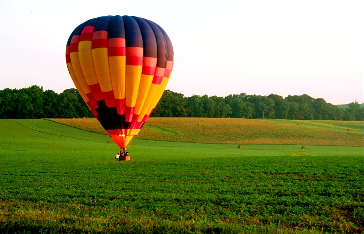 Baloon over a field