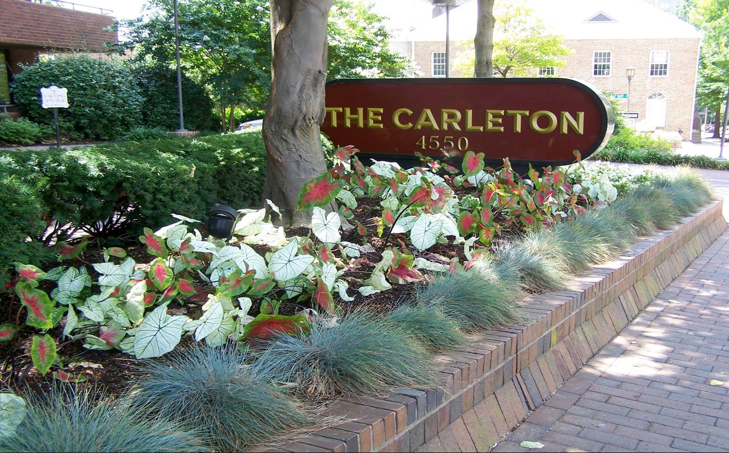 The Carleton, Ruppert Nurseries