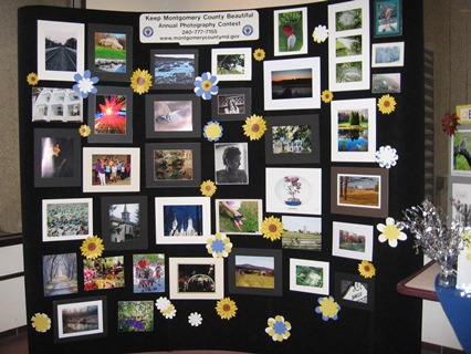 Photo Display of Other Entries