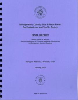 cover of Blue Ribbon panel report