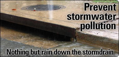 Prevent stormwater pollution: Nothing but rain down the stormdrain