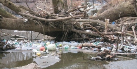 trash in a creek