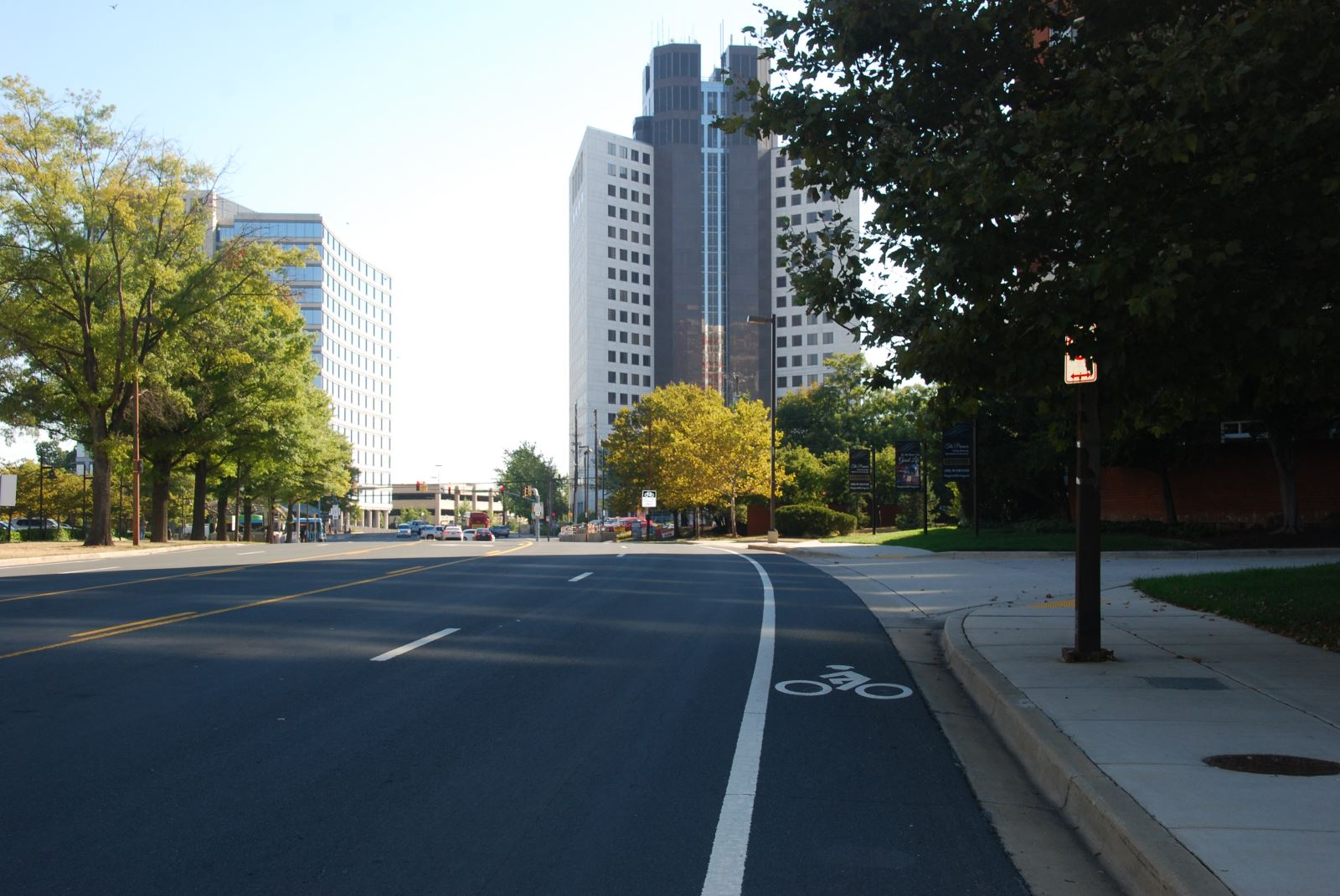 Marinelli Bike Lanes (Completed 2013)