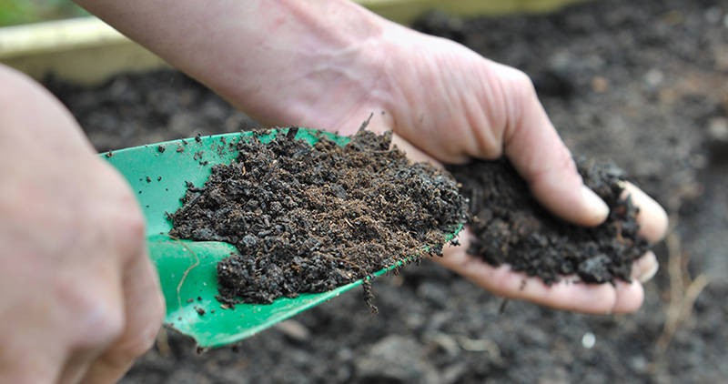 Soil. Image by sanddebeautheil, 123RF